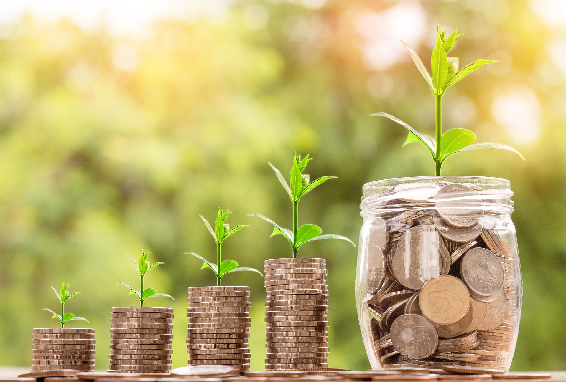 Top 10 Best Dividend Paying Stocks in India in 2019